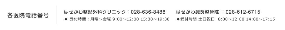 各医院電話番号 はせがわ整形外科:028-636-8488 ◆ 受付時間:月曜~金曜 9:00〜12:00 15:30〜19:30 | はせがわ鍼灸整骨院 :028-612-6715 ◆受付時間:土日祝日 8:00~12:00 14:00~17:15